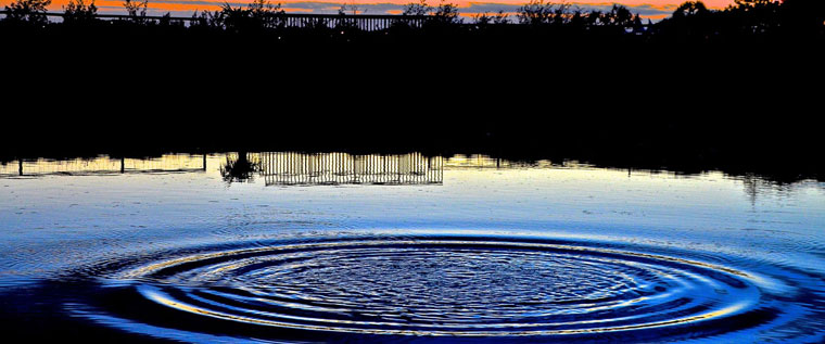 P-Clinical-care-concentric-ripples-on-a-pond